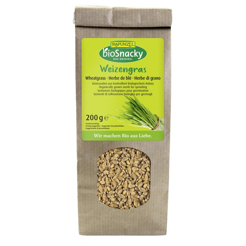 Seminte de iarba de grau pentru germinat